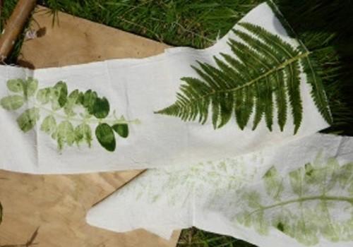 Les bienfaits de la Botanique : « Empreintes végétales » (animation jeunesse)